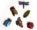 Brooch Insects