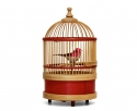 singing Bird in Cage