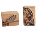 Dragonfly and tiger stamp