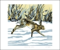 Card Runnung Hare in the Snow